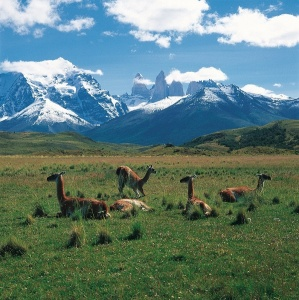 Argentina removes reciprocity rate for Canadian visitors